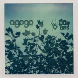 Oonops introduces Agogo Records