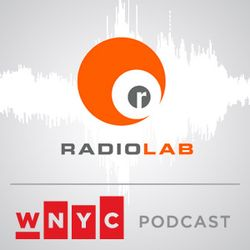 Radiolab Presents: More Perfect - Object Anyway