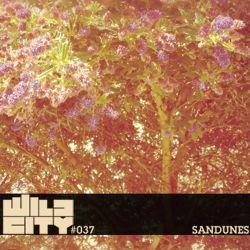 Wild City #037 - Sandunes