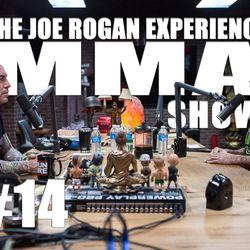 JRE MMA Show #14 with Matt Brown