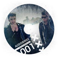 Audiobirdz | Deep Tech Vision 001 141504