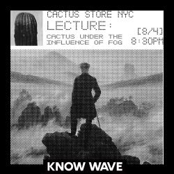 Cactus Store NYC : Cactus Under the Influence of Fog by Christian Herman Cummings - August 4th, 2017