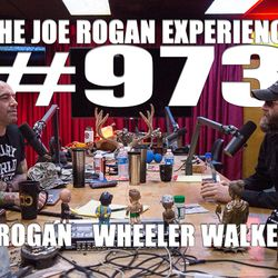#973 - Wheeler Walker, Jr.