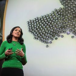 What intelligent machines can learn from a school of fish | Radhika Nagpal