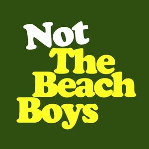 Not The Beach Boys