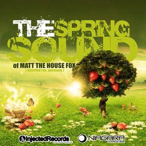 THE SPRING SOUND OF MATT THE HOUSE FOX (PROMO MIX)