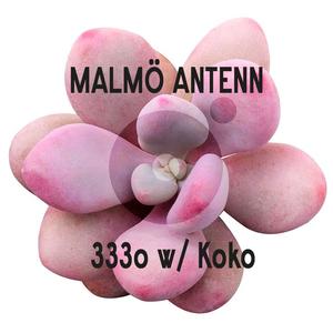 Loopline - 333o w/ Koko