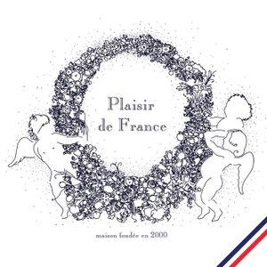 Plaisir de France 'Etat des lieux' mix @ Rinse FM (Oct 29th 2014) (by Kim Jon Rig)