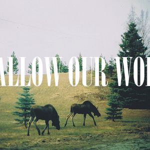 Swallow Our Words - Out and About Vol. 1