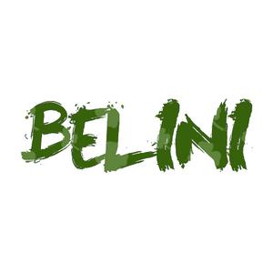 Set Electro House 2015 - Facundo Belini