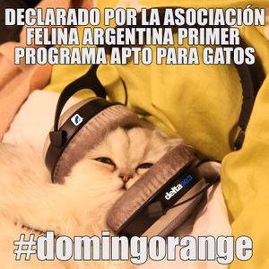 2012-07-22 - Delta Club presenta Bad Boy Orange - FmDelta903