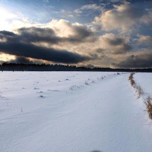 Snow Cloud Mix