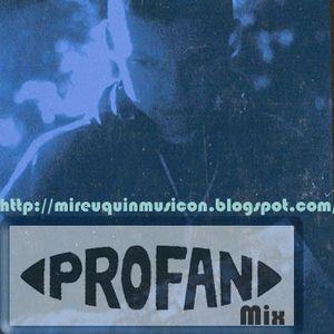 413X P3 Profan Mixxed