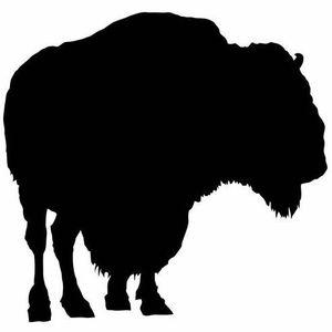 Bill Shakes 65 - Balearic Buffalo 2