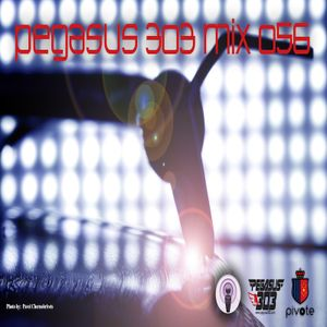 Pegasus 303 Mix 056 with Mr. Clean