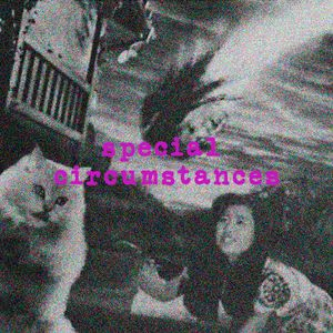 Special Circumstances - Episode 49 - A Momentary Lapse Of Sanity