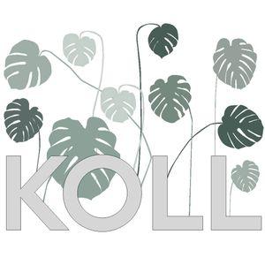 KOLL -050416