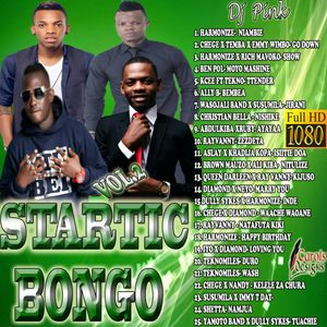 Dj Pink The Baddest - Startic Bongo Mixtape Vol 2 by DJ PINK THE