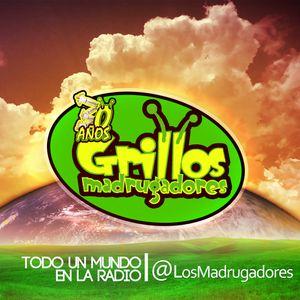 Grillos Madrugadores - De paseo por Panamá (100713)