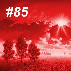 Beauty Trance #85