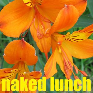 Naked Lunch: 17 Aug 12