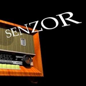 Senzor AM 81 (a hint of Christmas)