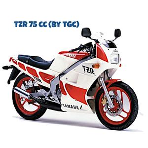 TZR 75 cc by TGC