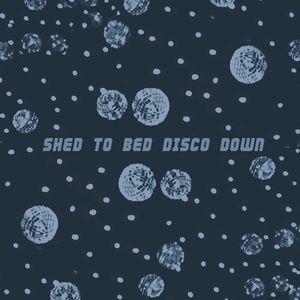Shed to Bed Disco Down