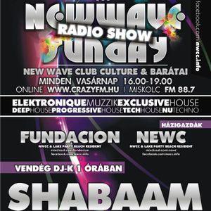 New wave sunday radio show 011 - fundacion
