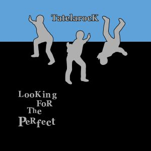 Looking For The Perfect