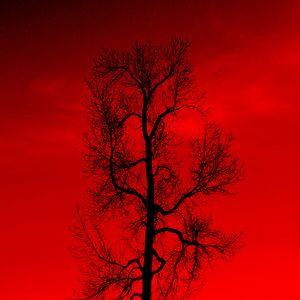 Dj Xavi - Red Rain