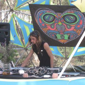 Sine Surfer @ Transition Festival 2012