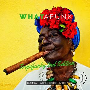 Whatafunk - Tropifunky Mixtapes (2016) / cumbia, latin, hip hop, afro
