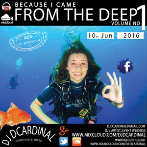 Because I Came From The Deep Vol 1 - A DJ DCardinal Mix Compilation