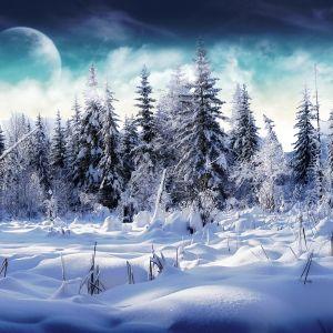 Pure & Passion Winter Event Mini-Mix