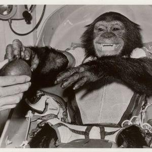 Cheeky Chimp Disco Vol 6 - Return To Space