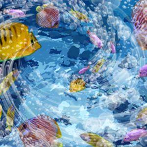 exit-6 puntata-radio pescia.it----vi portiamo un po al mare....