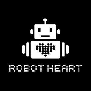Lee Burridge - Live @ Robot Heart Burning Man 2012