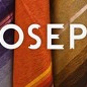 Joseph - The Purity Test