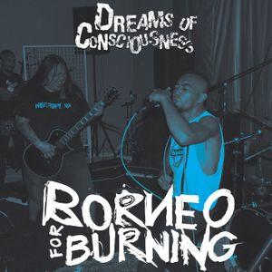 Mixtape 7: Borneo for Burning