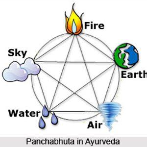 Sharirkriya Practical  Period on 23rd   Oct  15 – Part 1