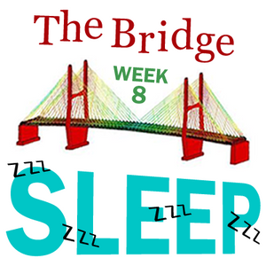 The Bridge | 2012.03.12 | Week 8: Sleep