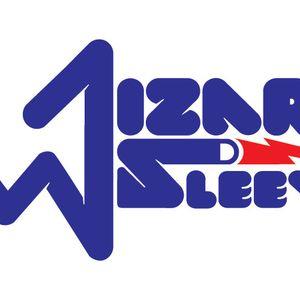 WIZARD SLEEVE 2010 teaser