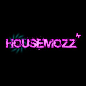 HouseMozZ #004 By Krys Robyns