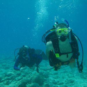 Deep Sea Diver Vol. 2