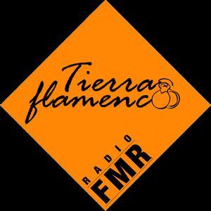 Tierra flamenca - Mai 2015 - Émission dédiée au festival Arte flamenco de Mont-de-Marsan