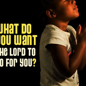 What Do You Want The Lord to Do For You Today?