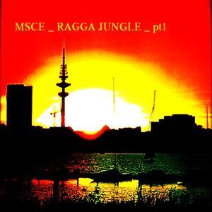 MSCE_RAGGA_JUNGLE_DNBMIX_pt2