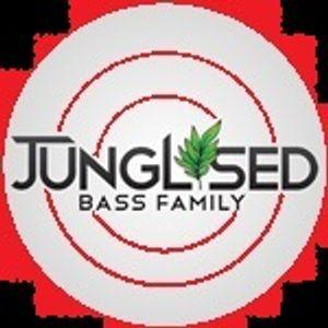 DJ'S JUICY & VYPER B2B 29-11-2012 JUNGLISED.CO.UK PT2