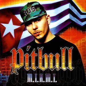 """Pitbull's """"M.I.A.M.I."""""""